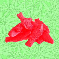 Stoney Fish Gummy Candy